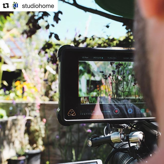 "We had loads of fun exploring Christchurch with @studiohome last week - garden inspiration is everywhere! Have a read of Julia's post here to find out more. Maybe you want to partner with us? Details with some screen grabs and stills in this repost. #Repost @studiohome ・・・ Well ... in the spirit of giving things a good go, this week we filmed the first of what I HOPE will be a series of snappy, local, light hearted episodes aimed to inspire my fellow beginners to uncover the magic of gardening. 🌤Together with my fantastic partner in crime; @flashworks_media, we have filmed and are working on the production of a pilot to use as our fluttery flag in an effort to attract a collection of likeminded partners so we can pursue our concept in full!! This initial series isn't delivering gardening ""how to's"" (I love Maggie Barry but alas, can't be her...) - instead it winds back a step to give inspiration for the ""where on EARTH do I even start"" stage. And this for beginners, from experience, is a natural process of opening your eyes to what is around you, what is possible while honing in on what you like when it comes to plants, blooms, colour and structure. I'm so excited about this plan to walk you through my own experience and introduce you to even more possibility (despite the mortal discomfort of watching myself one screen ... no pain no gain my friends! 🙅🏼‍♀️). So naturally, at this point we are now focused on rattling the tin so we can fund this idea and offer it to all of you freely. Any green thumbed business or passionate brands who are interested in aligning with a fresh take on the gardening world and learning about what we can offer our partners in return .... I would LOVE to hear from you 💫🌟 Pics are a collection of BTS by me and screen grabs from @flashworks_media 🙋🏼‍♀️🙆🏼‍♂️ 🤞🏼 #magicofgardening #flashworksmedia #christchurchnz #beginnergardening #nzgarden #newzealandgarden #a7s2 #fs5 #shoguninferno #prores #4k"