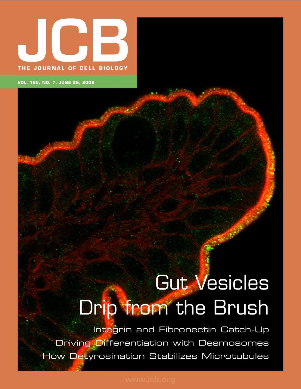 JCB2009 Cover.jpg