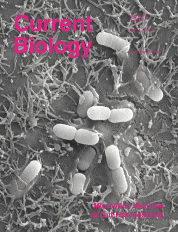 CBio April 10 '12 Cover.jpg