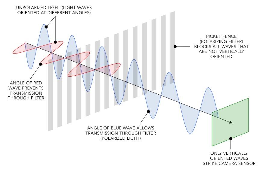Polarised Light Schematic.jpg