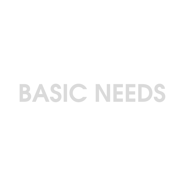 Basic-Needs.png