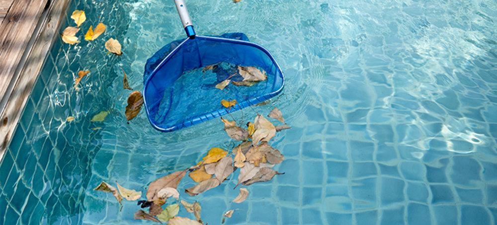 Absolute Pool Service.jpg