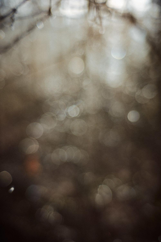 Einsamkeit 3.jpg
