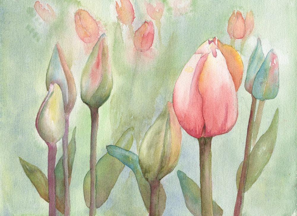 Peach & Yellow Tulips