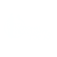 A National Trial Lawyers Top 100 award for top rated lawyer Ali Shahrestani, Esq.
