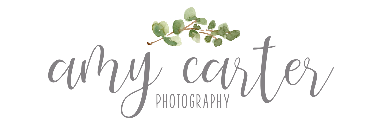 Amy Carter Photography | Raleigh Newborn Photography
