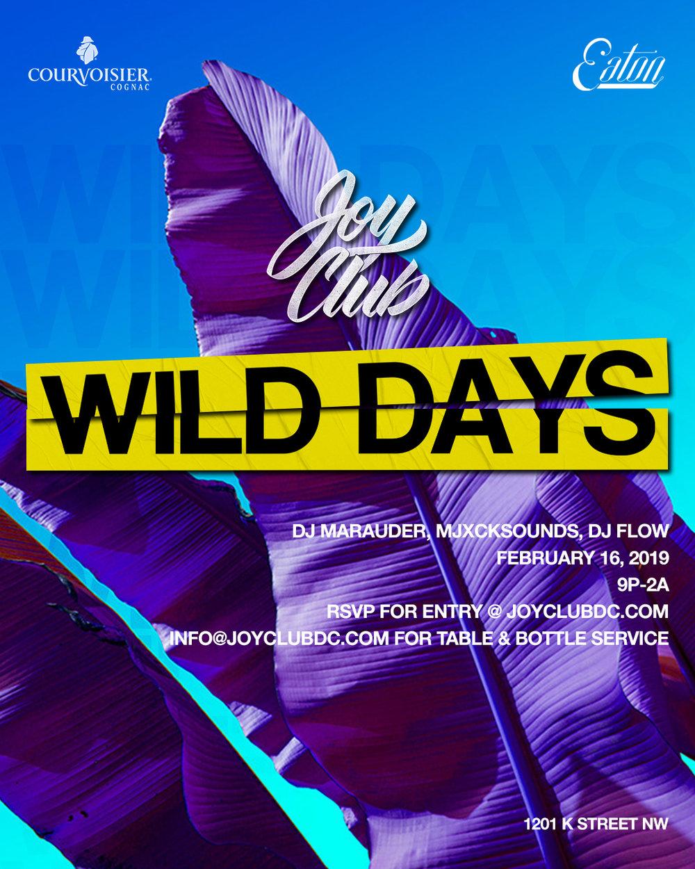Wild-Days-Joy-Club-0211.jpg
