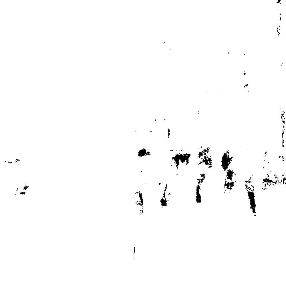 Copy of Faces in Windows