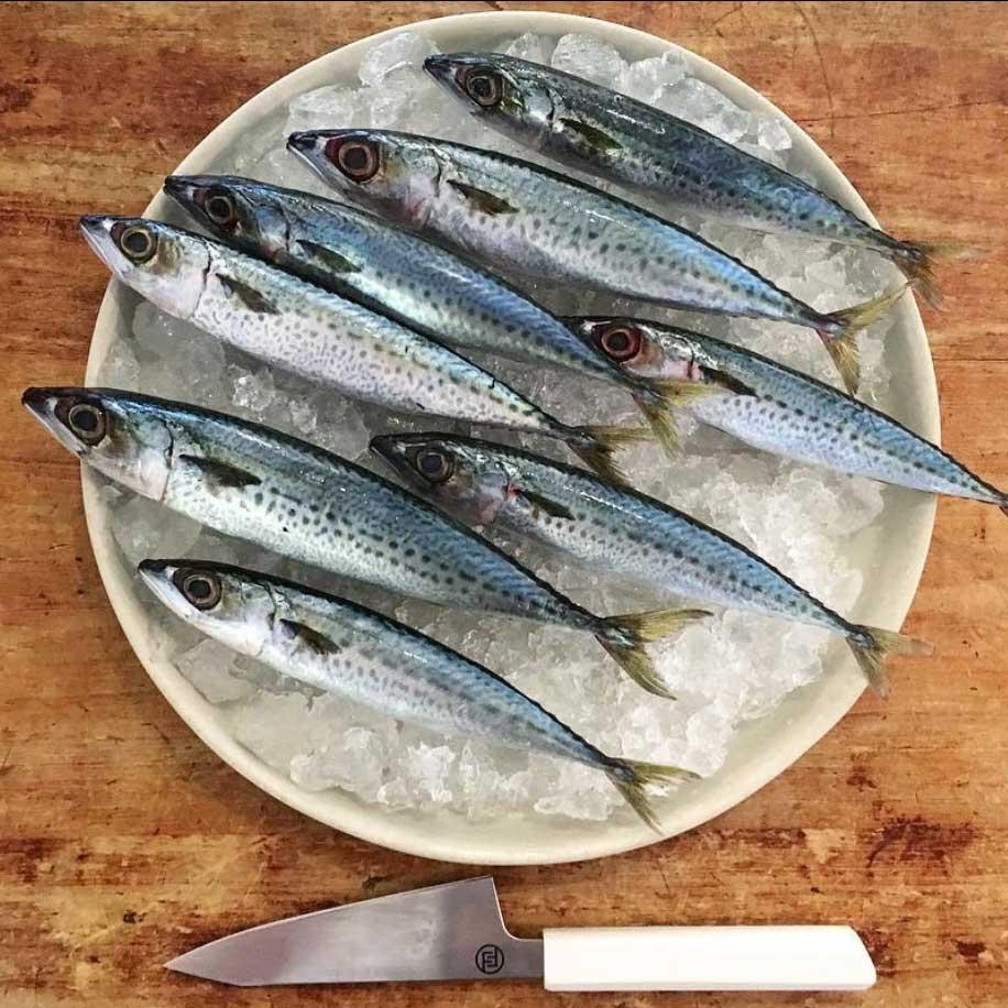 Pipit_Restaurant-Mackerel.jpg