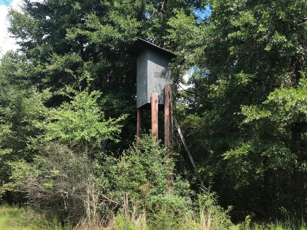 Little Pine Hunting Club