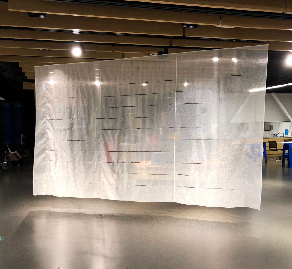 Milky Way, 2018   Papaver Somniferum seeds in organza, 250 x 425cm, installation view in  We did the soft wind , Adelaide City Library