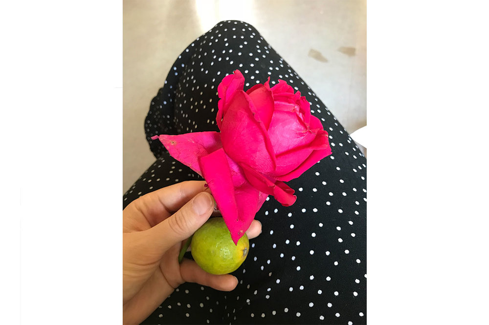 When we arrived at the HQ of the farming group, we were gifted a rose and a lemon. The rose is symbolic of love and friendship and the lemon is to ward away evil spirits. I was told to roll the lemon in the palm of my hands as it releases the most beautiful lemon scent, used to help with nausea.