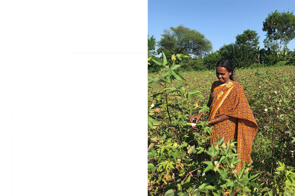 Shashikala, who is one of the farming group directors cares for the women in her hamlet and four other hamlets.