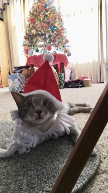 Santa Suf on Christmas Day. (December 25, 2017)