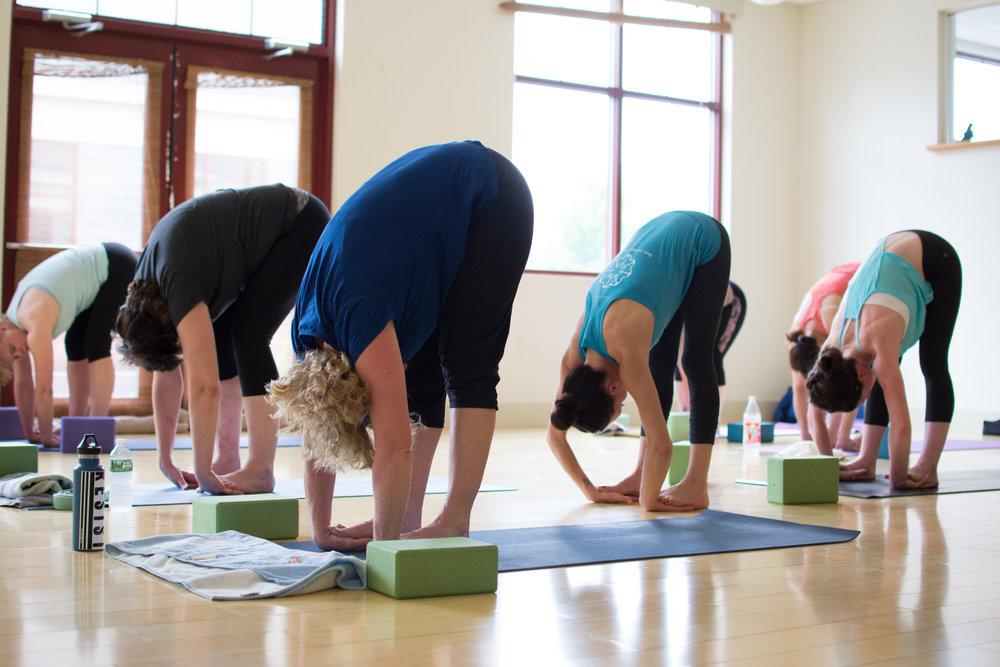 yoga-group-class-south-portland-maine.jpeg