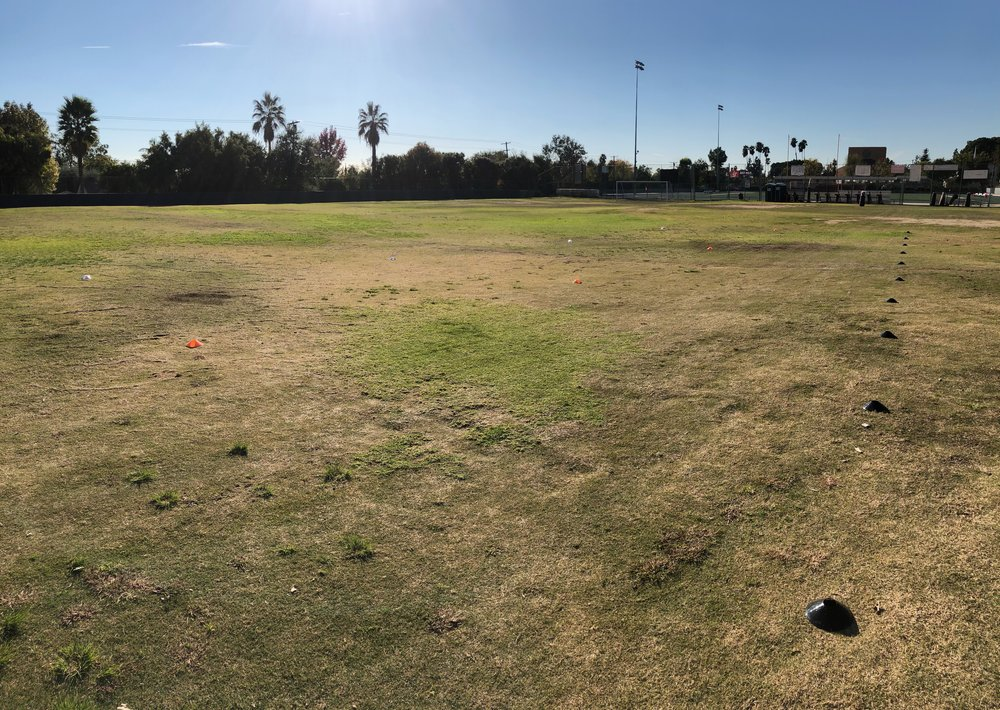 Kind of hard to see because the grass is terrible but I have the athletes line up on the black cones on the right