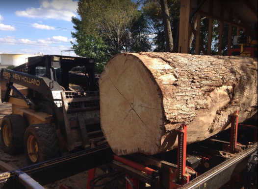 One of four 20,000lb logs going on the saw mill.