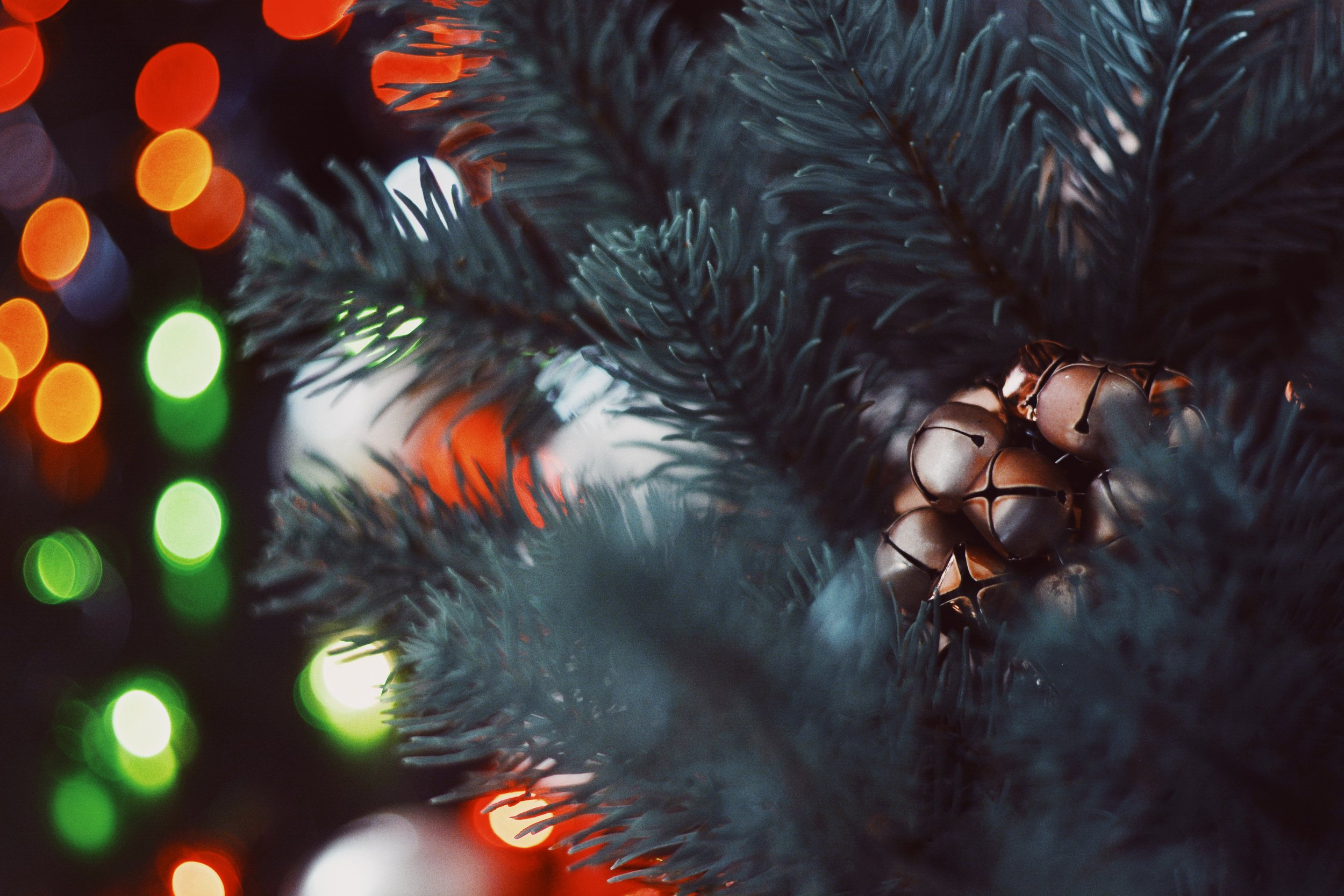 A_living_christmas_co_12 Jpg