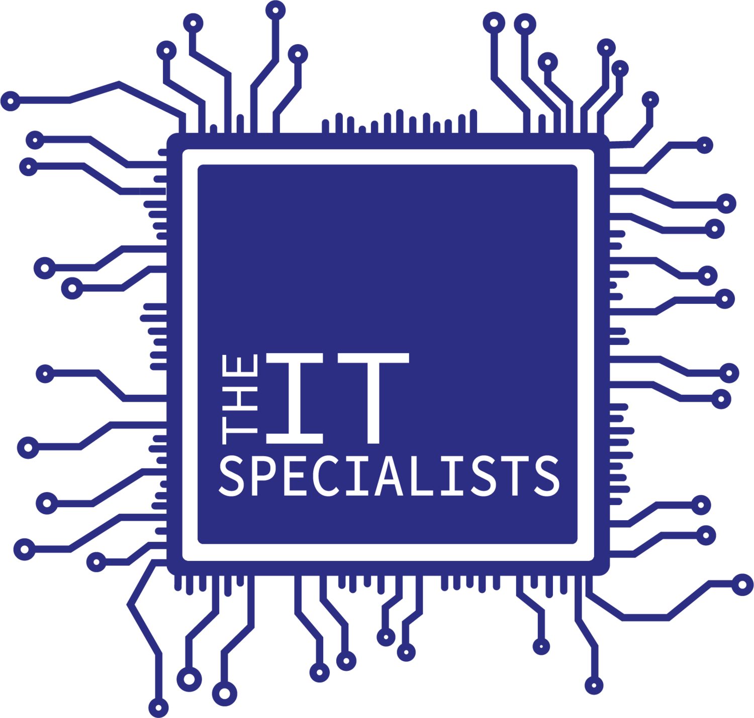 The IT Specialists
