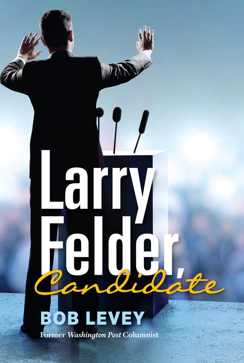Store - Find out how you can get your copy of Larry Felder, Candidate.