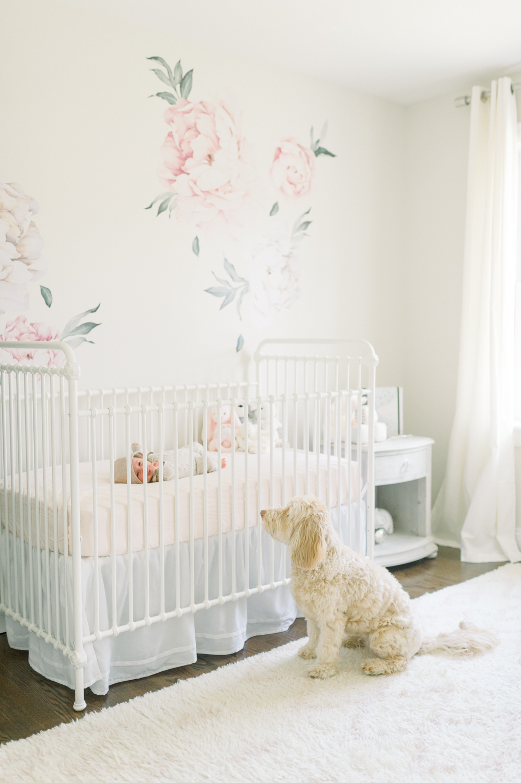 newborn and dog_CT newborn photographer_fairfield county newborn photographer