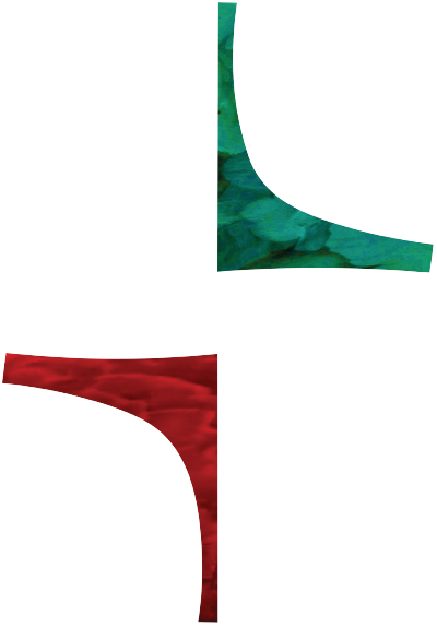 Flaxmore-Logo-200px_reverse@2x.png
