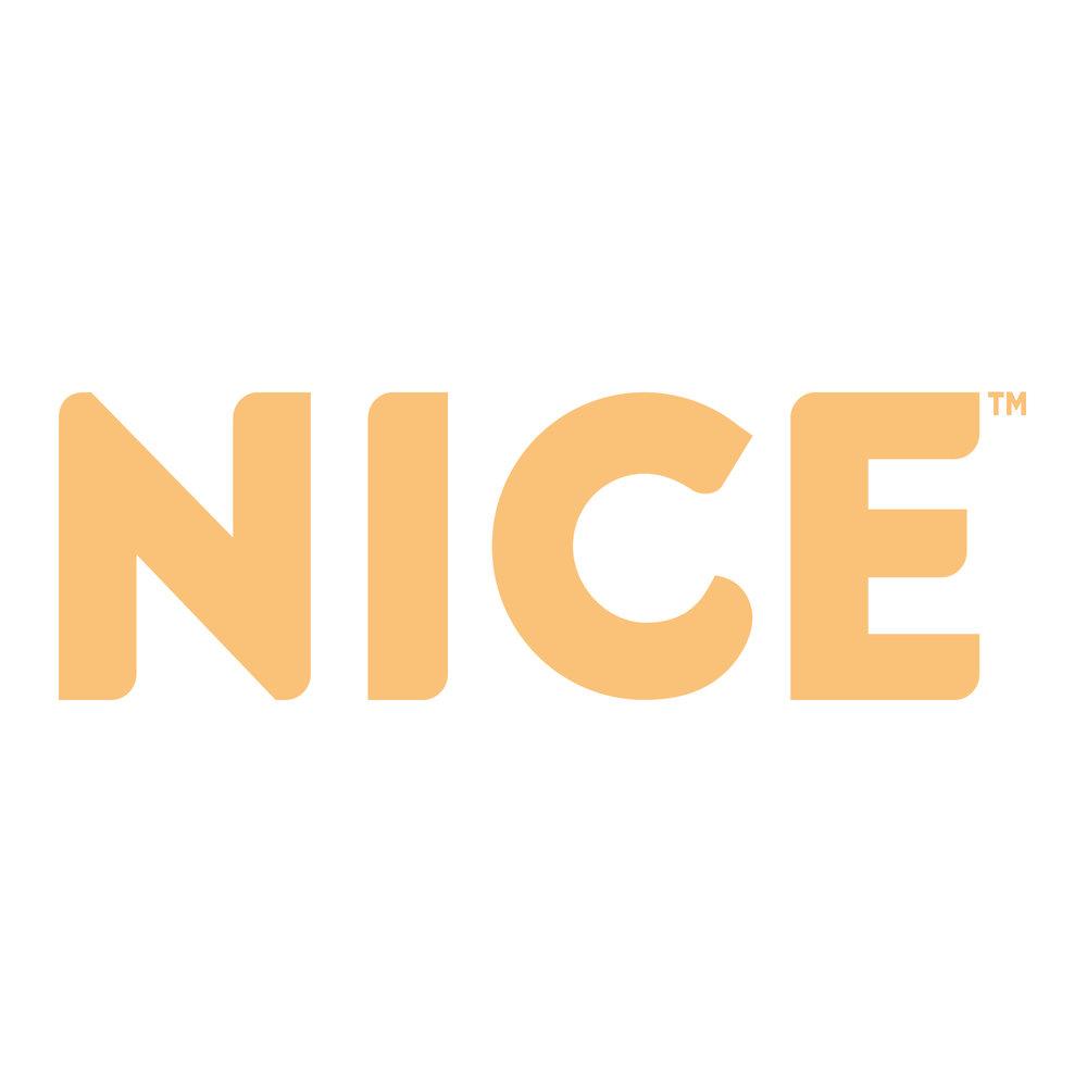 NICE.jpg