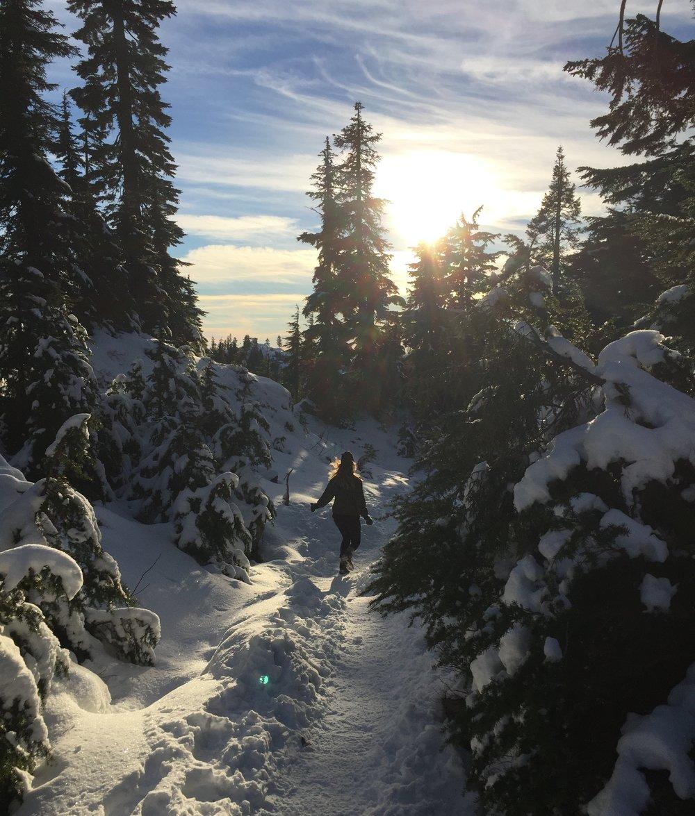 Winter Wonderland On Mt. Seymour