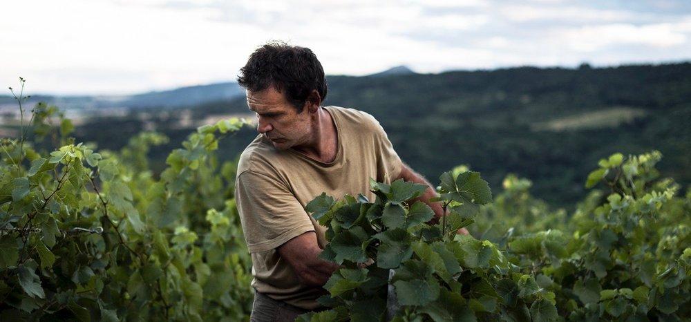 Pierre Beauger - Montaigut-le-Blanc – Auvergne