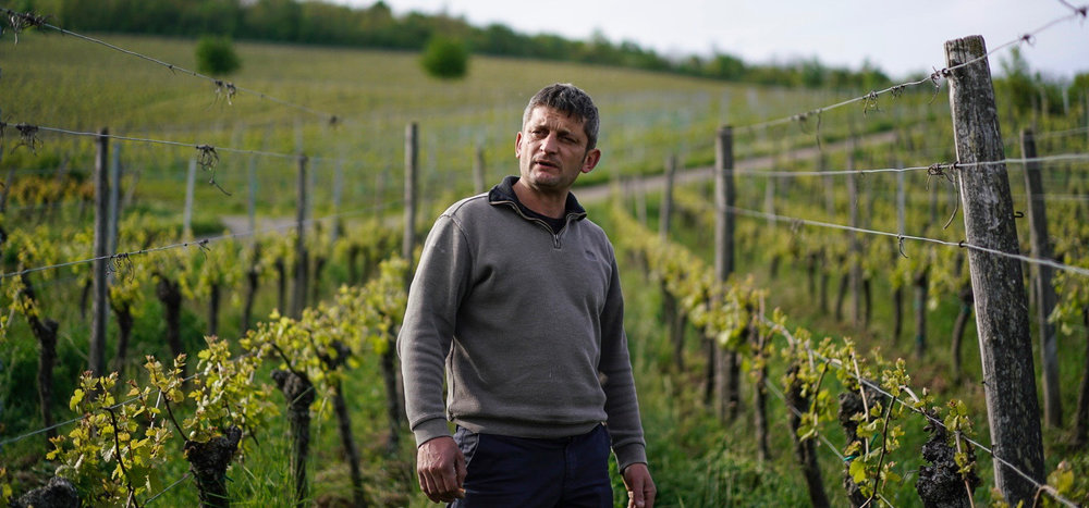 Christophe Lindenlaub - Dorlisheim – Alsace