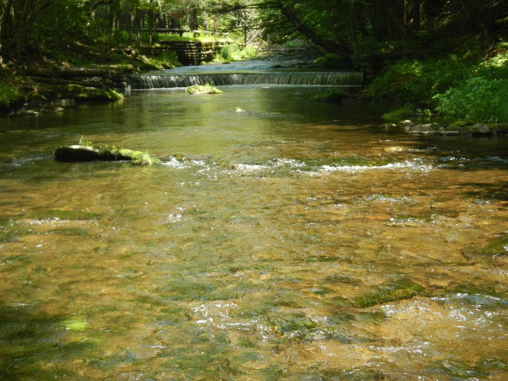 NY State Streamflows -