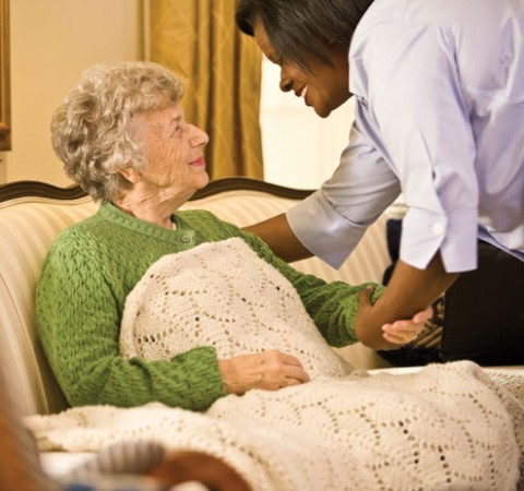 Euthanasia FAQ's - Most commonly asked questions are answered.