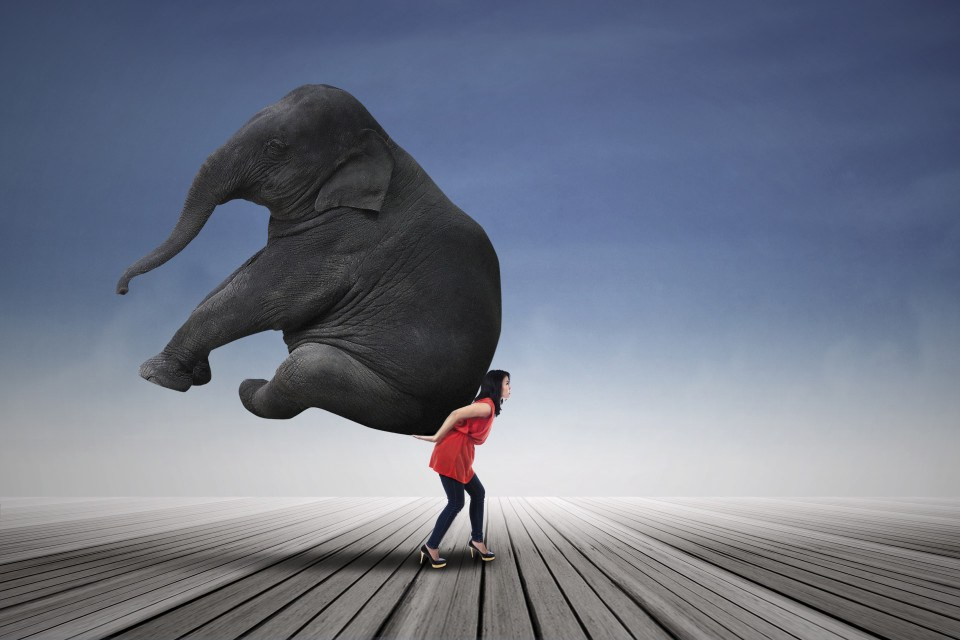 woman-lifting-elephant-.jpg