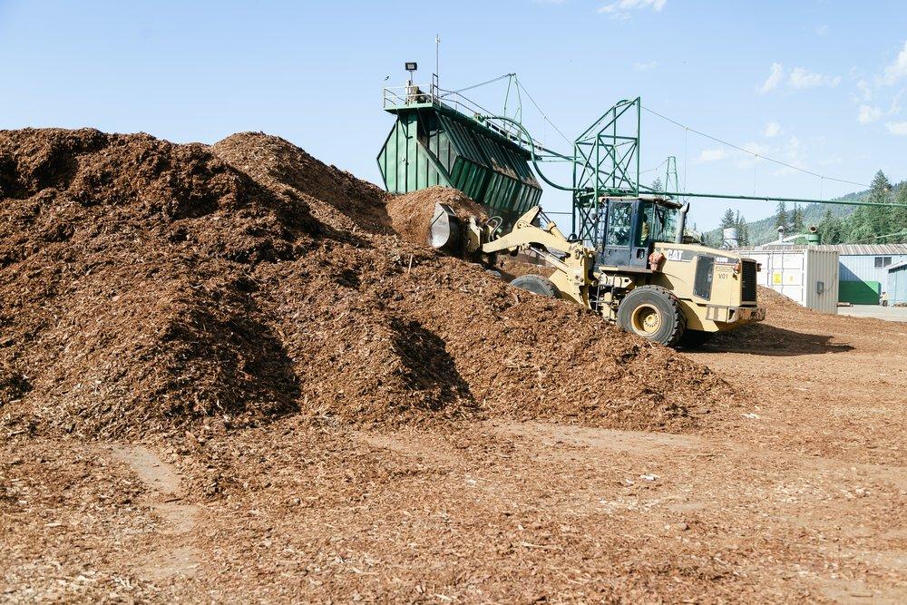 Biomass_Gallery_1.jpg
