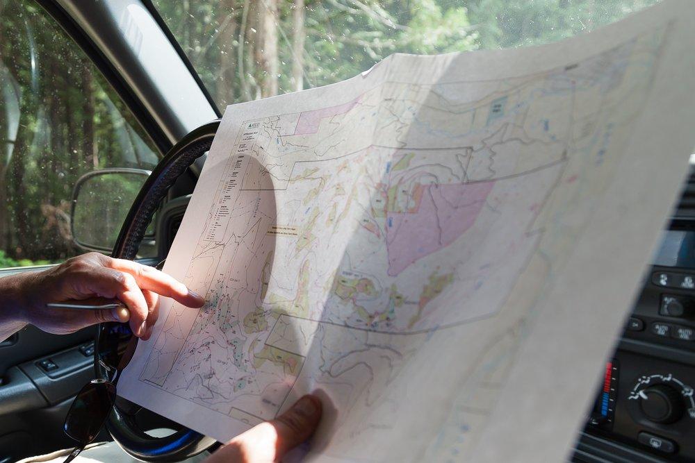 ForestManagement_Planning_Gallery_1.jpg