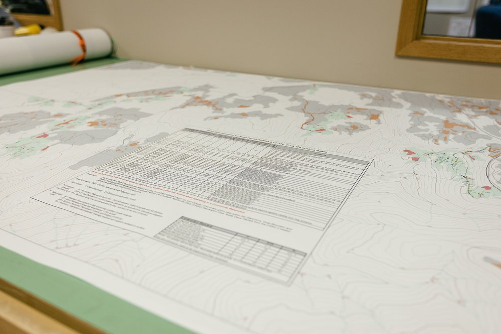 ForestManagement_Planning_Gallery_2.jpg