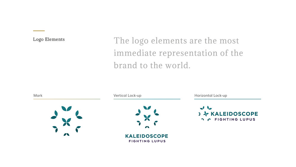 DN_Portfolio_Kaleidoscope_Logo+Elements.jpg