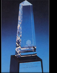Cotton Incorporated Award, 1981