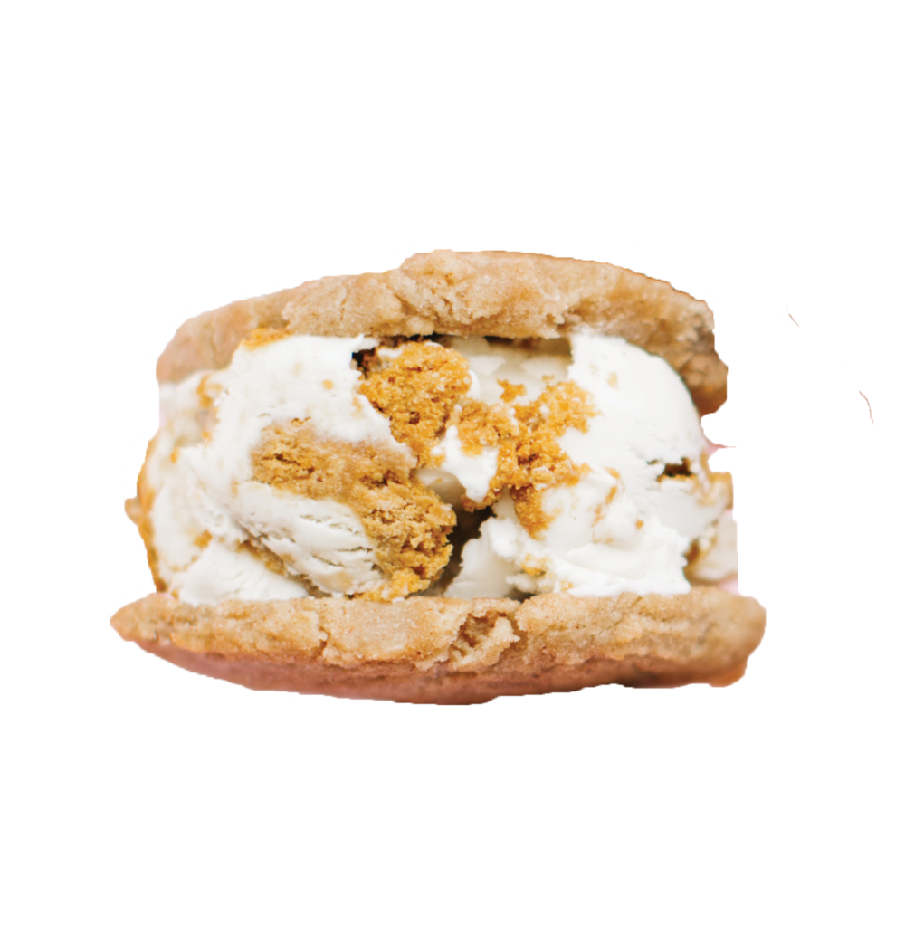 Frequent Flyer   Snickerdoodle Cookies  Biscoff Ice Cream