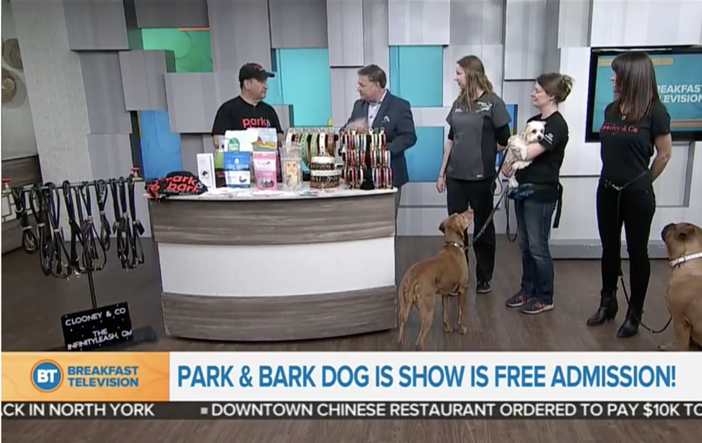 Breakfast Television - Park & Bark Dog Show