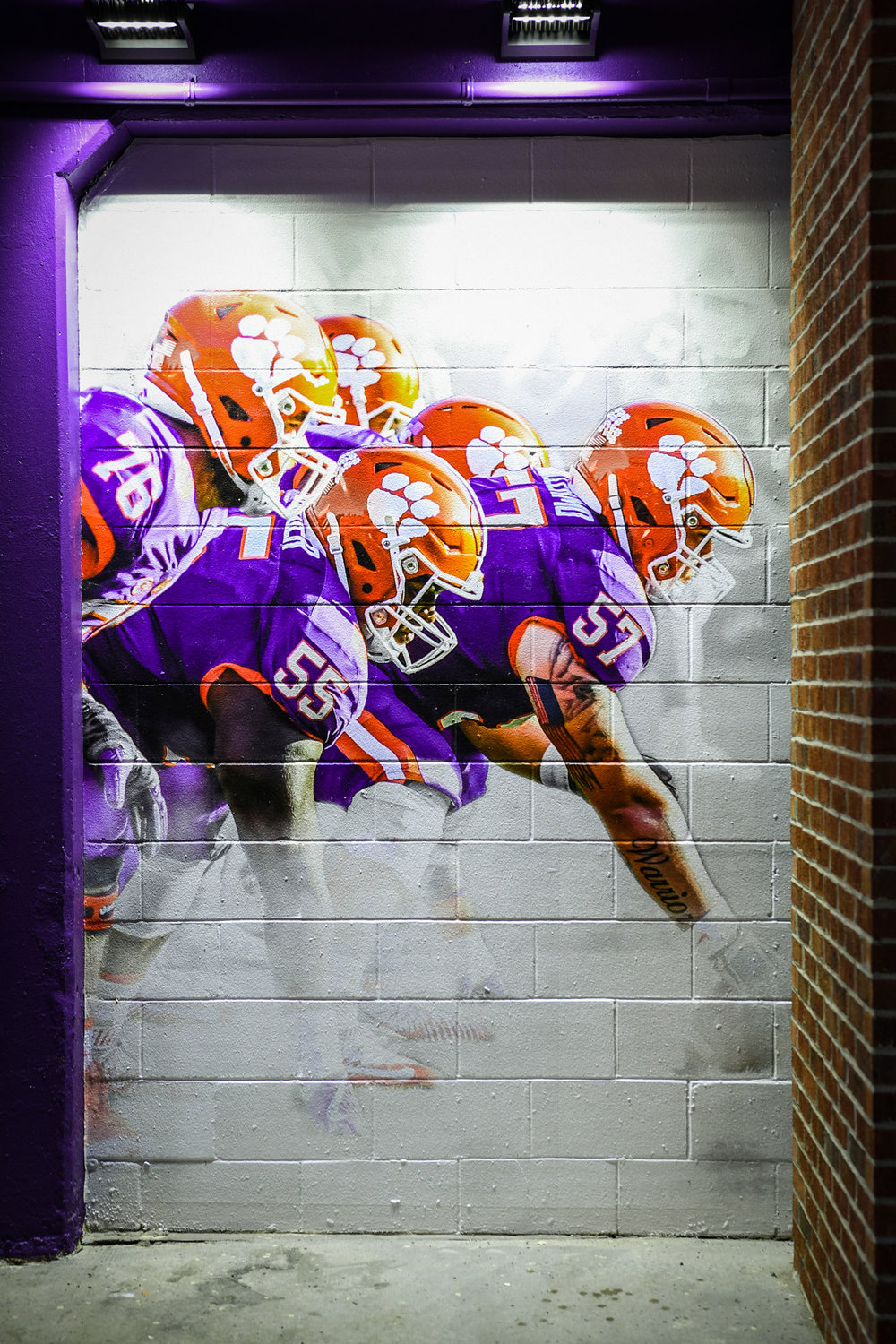 3-2018 FB Home Tunnel-6-CC.jpg