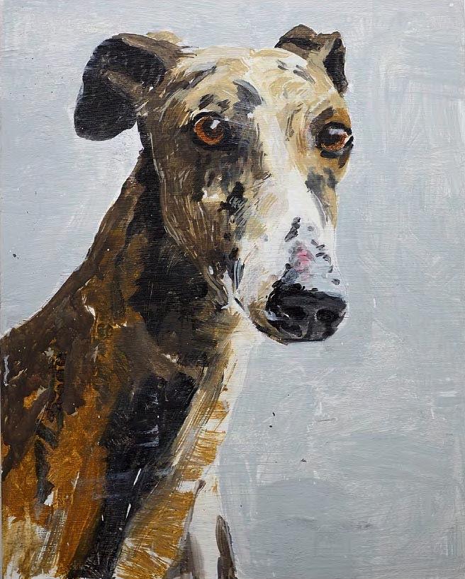 greyhound_20x16.jpg