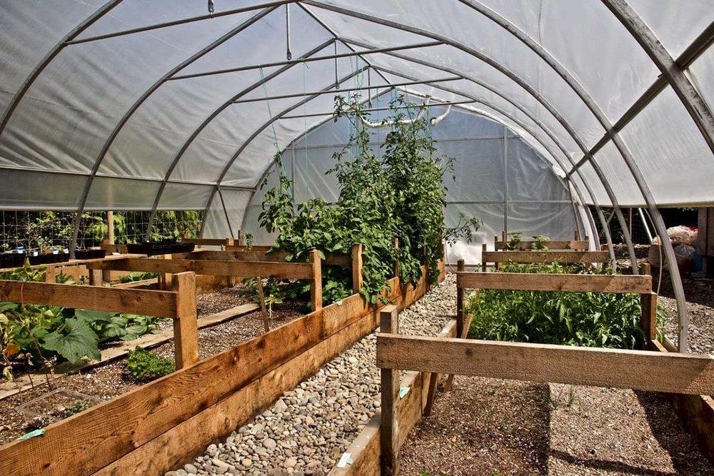 kapoose-creek-retreat-greenhouse-interior.1400x0.jpg