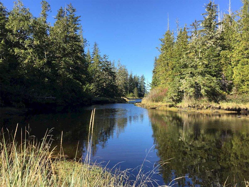 kapoose-creek-vancouver-island.1400x0.jpg