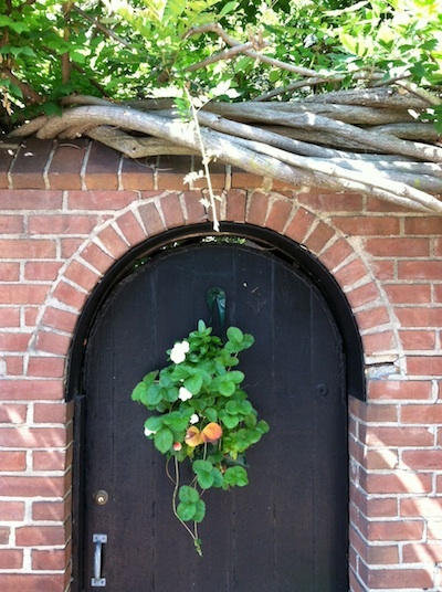 Georgetowndoor
