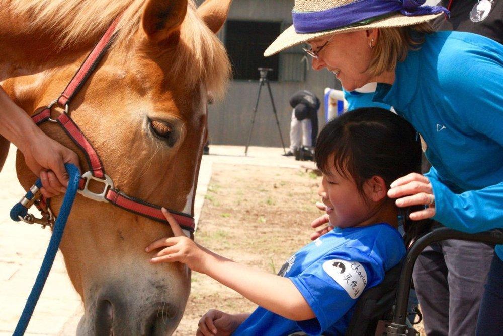 """沐儿 - 沐儿是一匹10岁的中国驮马。她是一匹拥有独特个性,友善的骏马。她十分想成为一匹""""扑击""""马,我们很确信她是一只坚守自己地盘并绝不退缩的马。沐儿曾是一个电影明星,在Matt Demon和Willem Dafoe主演的电影《长城》里饰演引领战车的马。她理解一个人愿意选择耐心地做事情的想法,并且她也会选择同样的处事原则。对于所有与她接触的人来说,她可以清晰地表达自己的想法,这一点是令人愉快的。见过大世面的她胆大心细,性情温和,步态舒缓优雅,非常适合特殊儿童的骑乘,她目前正是风华正茂之时,是HOPE的主力用马。"""