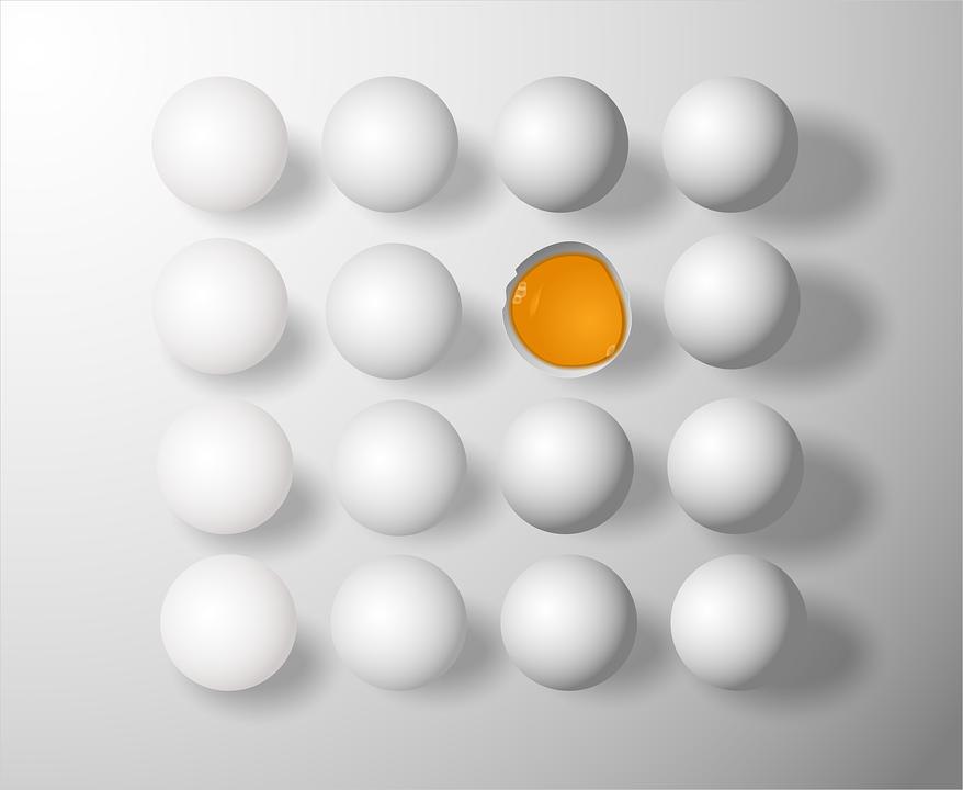 Spoilage of Eggs -