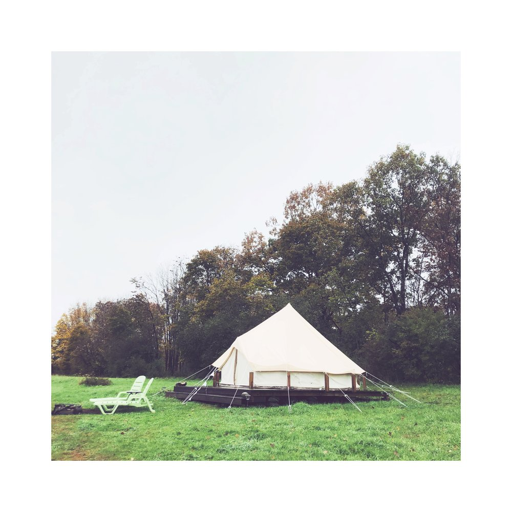 The Firefly, a bell tent nestled against the tree-line.