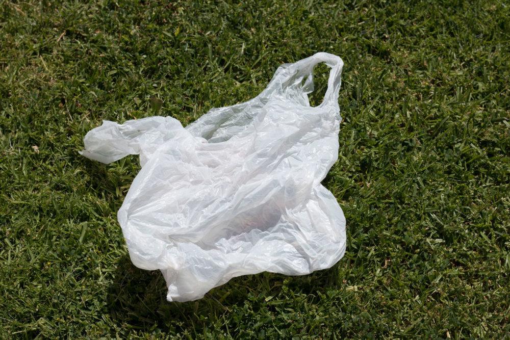 edn_plastic_bag_on_grass.jpg