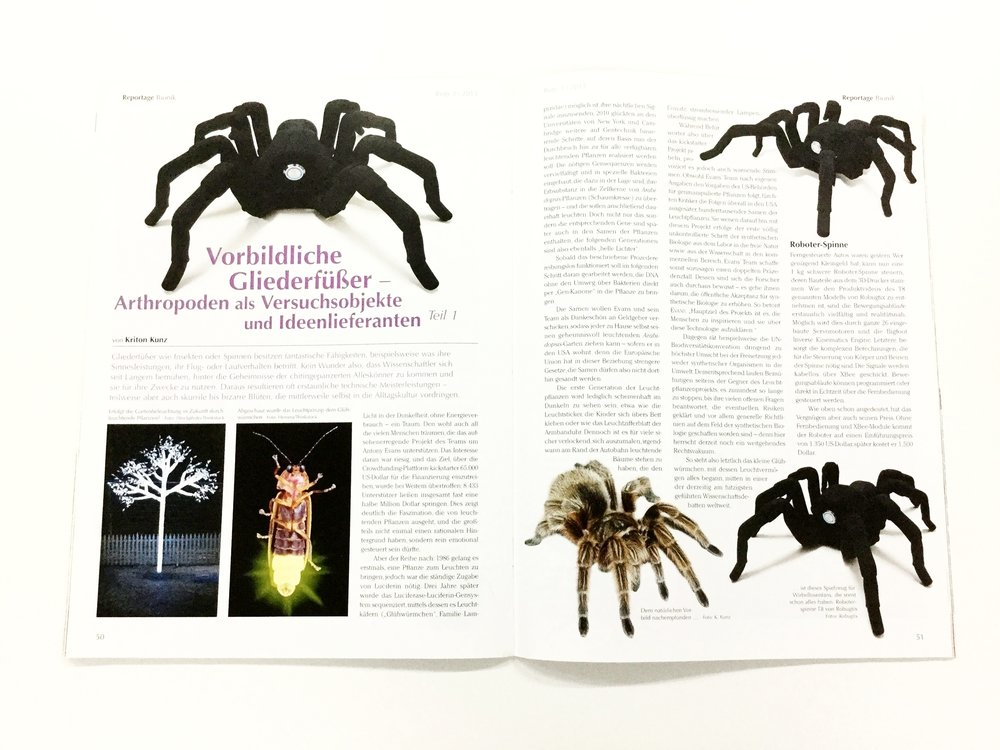 Bugs (p.51) - The T8 compared to real-life tarantulas